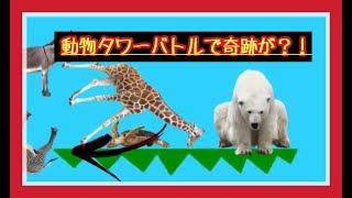 【動物タワーバトル】奇跡が起きた?!【神業】