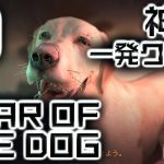 Into the Dead 2 【神業】 YEAR OF THE DOG (戌年) 一発クリア!