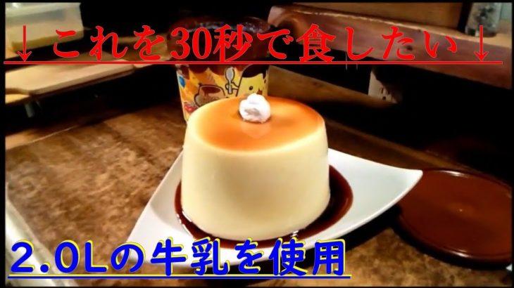 【神業】2 0L分のプリンをわずか30秒で食す者 作成&食