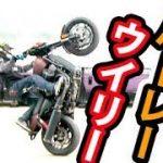 ハーレー神業!ドリフトウイリー!木下真輔ハーレーダビットソン【Harley-Davidson Street Rod XG750A】Bike Stunt