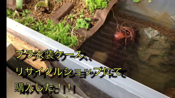 プラ衣装ケース  リサイクルショップで驚きの200円‼️