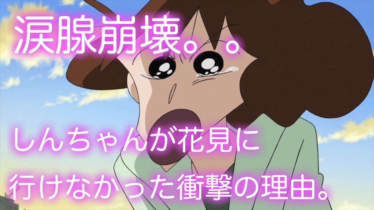 【泣ける話】しんのすけが花見に行けなかった衝撃の理由。涙腺崩壊 アニメ