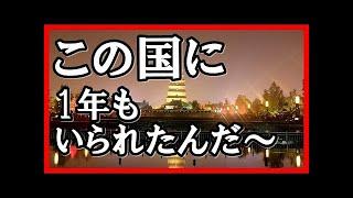 【海外の反応】感動!日本の新幹線初体験の外国人「この凄さを日本人は解ってない!」あまりの感激ぶりにびっくり仰天!!