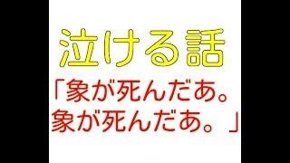 【閲覧注意!】泣ける話:罪なき最愛の家族象