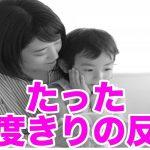 【感動する家族の実話】たった一度きりの反抗
