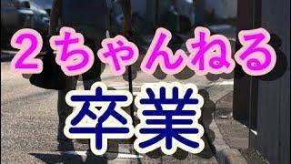 【泣ける!感動する話】2ちゃんねる卒業【涙腺崩壊】