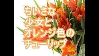 【ちょっぴり泣けるいい話】ちいさな少女とオレンジ色のチューリップ