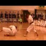 カポエラ 総合格闘技 最強 ノックアウト まとめ 蹴り技 神業