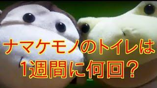 ぼーちゃんのおもしろクイズ【8】