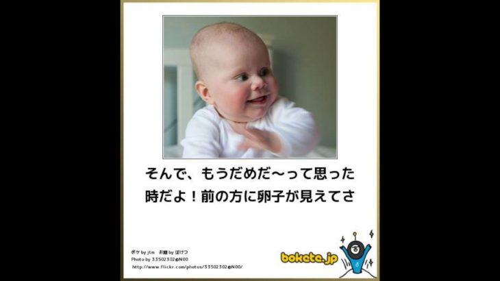 [大爆笑]見なきゃ損赤ちゃんの面白ネタ!!