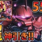 【ガンロワ】3周年ガシャ&熱源祭55連!!驚きの結果!?【MOKOTV】