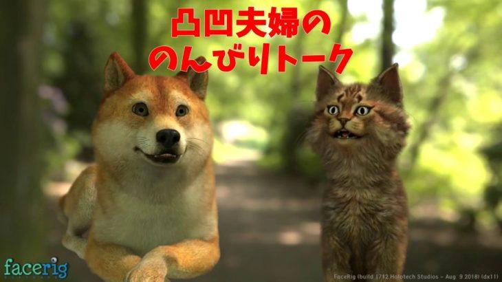 #2.1 驚きのお知らせ ねこ姐と犬君「凸凹夫婦の のんびりトーク」