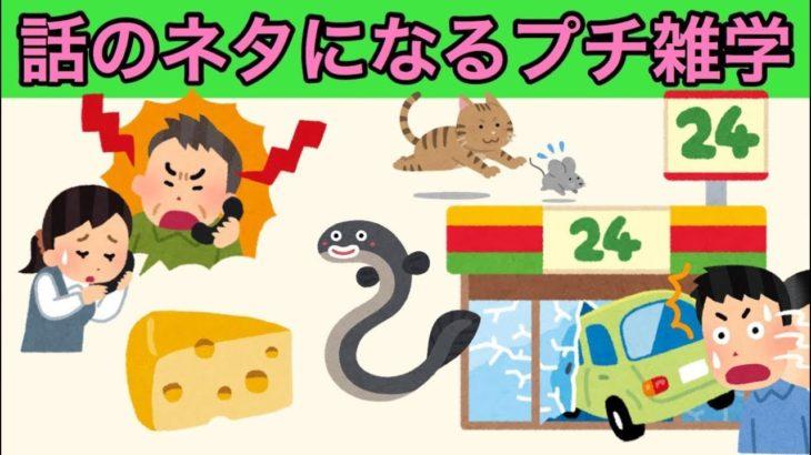 プチ雑学:色んなジャンルのおもしろ雑学6個【話のネタにどうぞ】