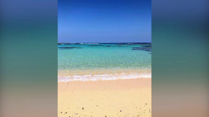 奄美で一番美しい土盛海岸!青の洞窟感動シュノーケリング ツアー