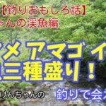 釣りで会えたら☀️ 第12話【釣りおもしろ話】けんちゃんの渓魚